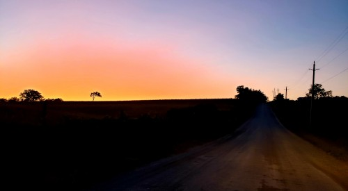 Today was full of wine, laughter, and cheers. But as darkness grew, the end drew near. I waved goodbye to my friends and family. Thank you all and I'll see you soon. I got on my horse heading into the gloom. Sad to leave but happy to go. Down on old country road.