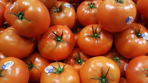 delicious-red-tomatoes.jpg