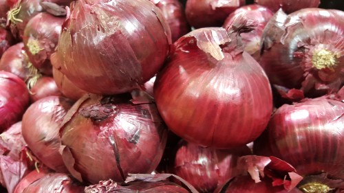 healthy-red-onion.jpg